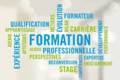 Formateur animation formation